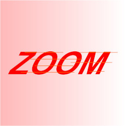 Zoom! to the next Parish Council meeting…